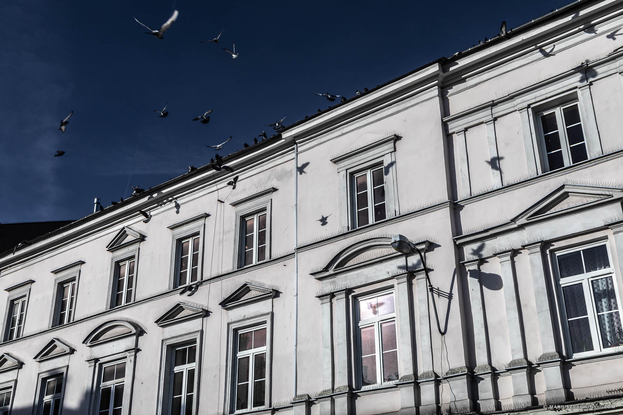 Na ludowo wokół Kielc.
